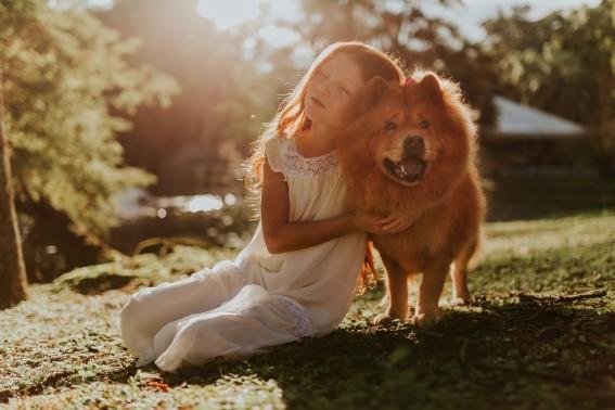Alergia a Cachorro — Sintomas e o Que Fazer