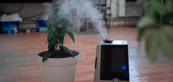 Como o Purificador de Ar Ajuda a Evitar Problemas Respiratórios